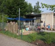 Kindergarten Rimschweiler