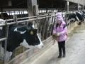 Selina füttert die Kuh